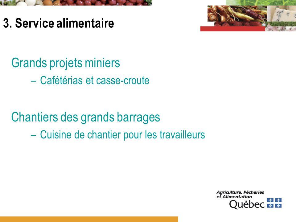 3. Service alimentaire Grands projets miniers –Cafétérias et casse-croute Chantiers des grands barrages –Cuisine de chantier pour les travailleurs