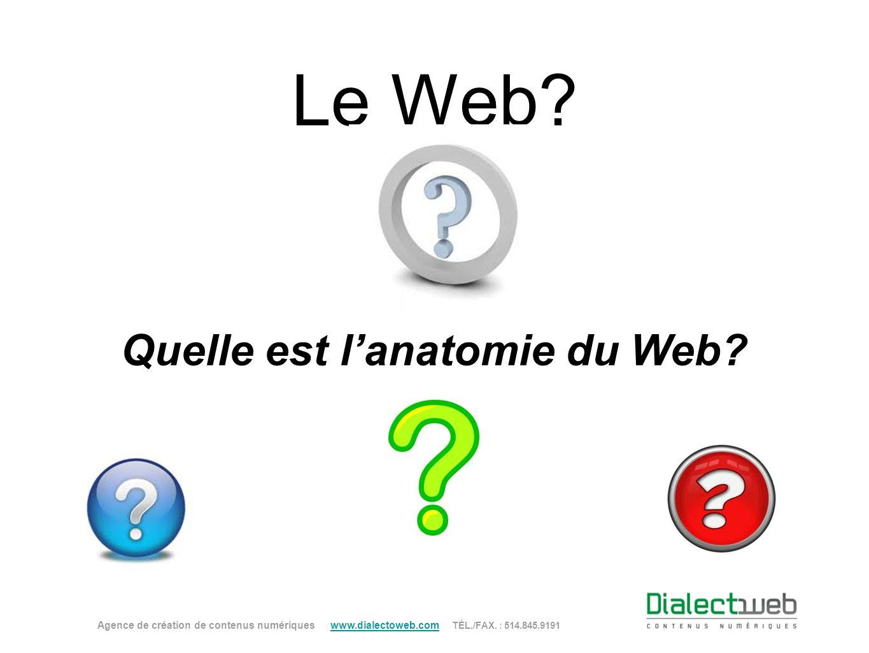 Le Web? Quelle est lanatomie du Web? Agence de création de contenus numériques www.dialectoweb.com TÉL./FAX. : 514.845.9191 www.dialectoweb.com