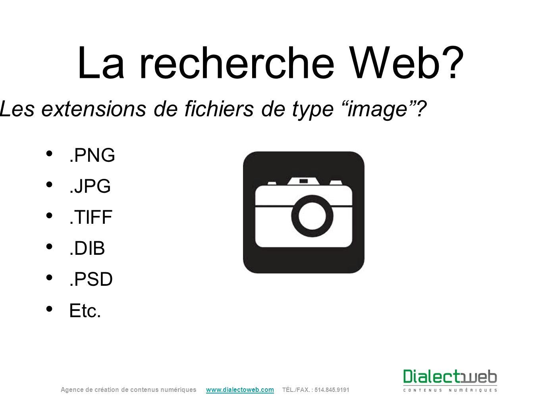 La recherche Web? Les extensions de fichiers de type image?.PNG.JPG.TIFF.DIB.PSD Etc. Agence de création de contenus numériques www.dialectoweb.com TÉ