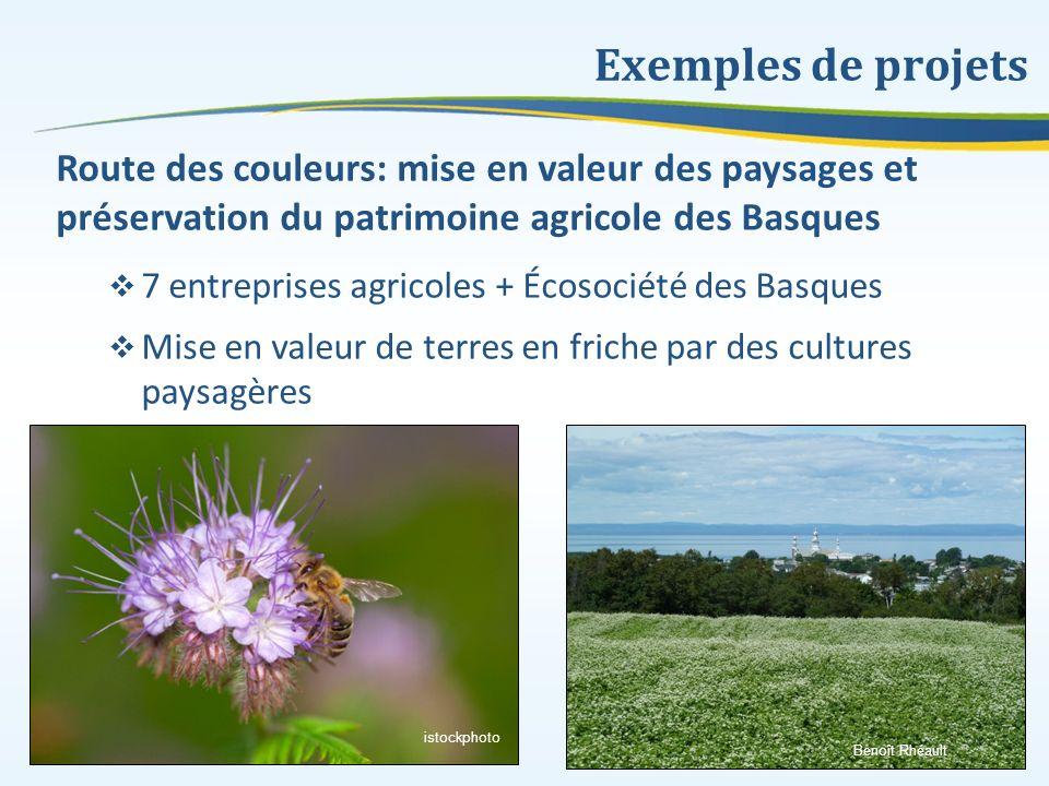 Exemples de projets Route des couleurs: mise en valeur des paysages et préservation du patrimoine agricole des Basques 7 entreprises agricoles + Écoso