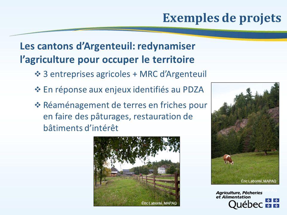 Exemples de projets Les cantons dArgenteuil: redynamiser lagriculture pour occuper le territoire 3 entreprises agricoles + MRC dArgenteuil En réponse