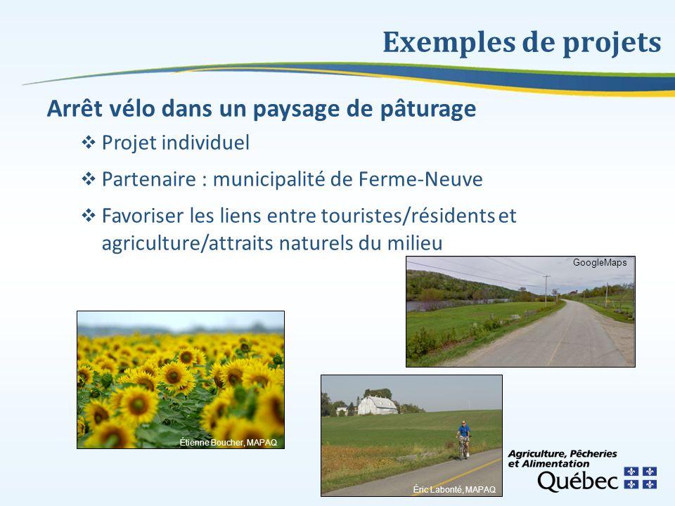 Exemples de projets Arrêt vélo dans un paysage de pâturage Projet individuel Partenaire : municipalité de Ferme-Neuve Favoriser les liens entre touris