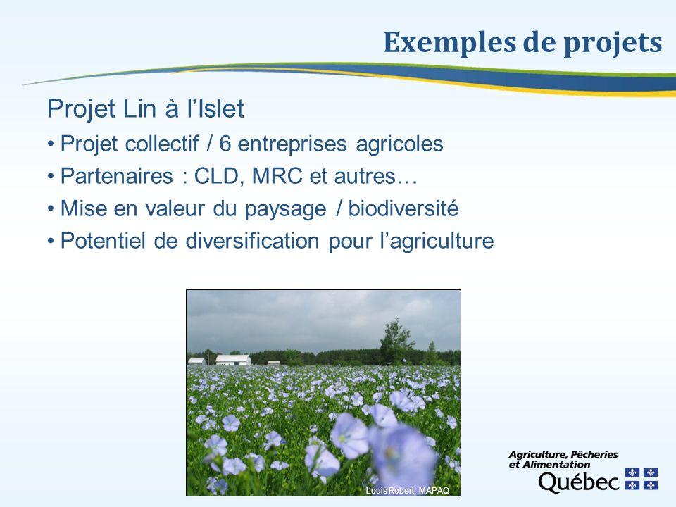 Exemples de projets Projet Lin à lIslet Projet collectif / 6 entreprises agricoles Partenaires : CLD, MRC et autres… Mise en valeur du paysage / biodi