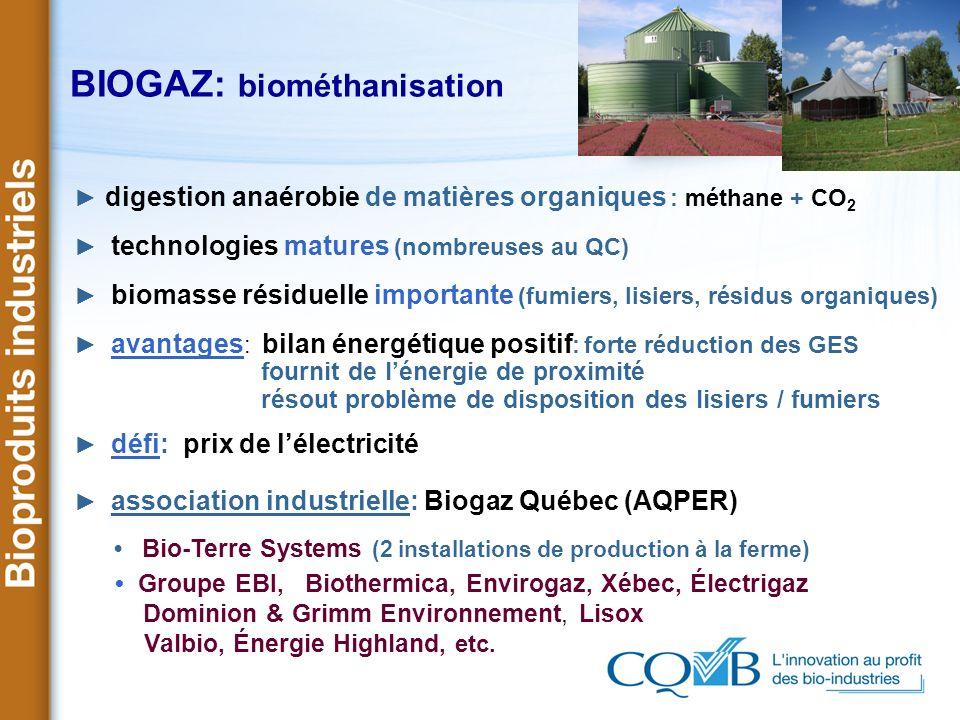BIOGAZ: biométhanisation digestion anaérobie de matières organiques : méthane + CO 2 technologies matures (nombreuses au QC) biomasse résiduelle impor