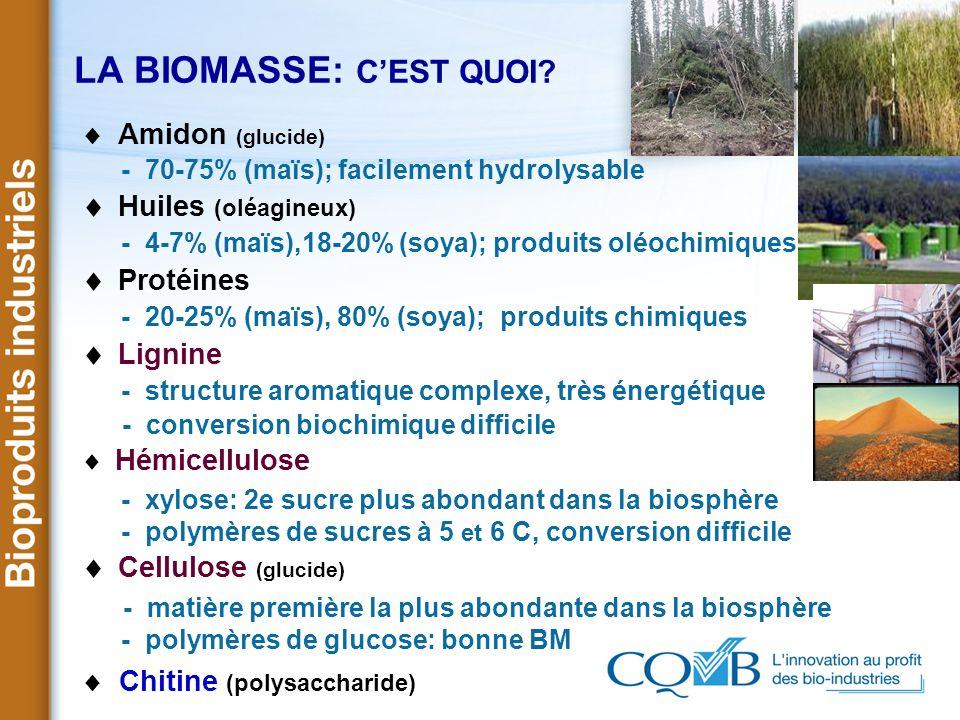 LA BIOMASSE: CEST QUOI? Amidon (glucide) - 70-75% (maïs); facilement hydrolysable Huiles (oléagineux) - 4-7% (maïs),18-20% (soya); produits oléochimiq