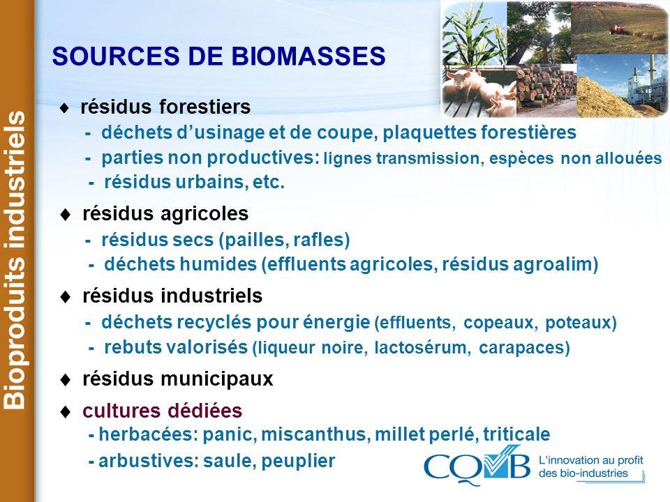 SOURCES DE BIOMASSES résidus forestiers - déchets dusinage et de coupe, plaquettes forestières - parties non productives: lignes transmission, espèces