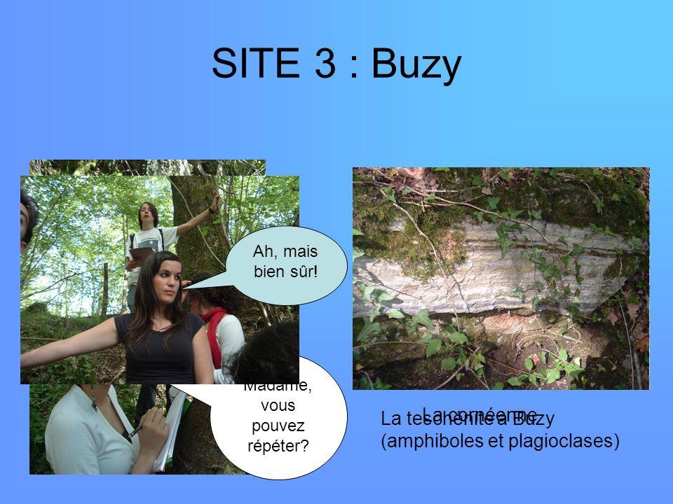 SITE 3 : Buzy La teschénite à Buzy (amphiboles et plagioclases) Madame, vous pouvez répéter? La cornéenne Ah, mais bien sûr!