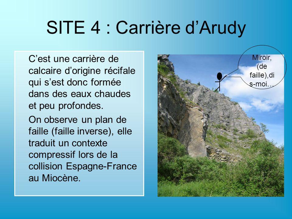SITE 4 : Carrière dArudy Cest une carrière de calcaire dorigine récifale qui sest donc formée dans des eaux chaudes et peu profondes. On observe un pl