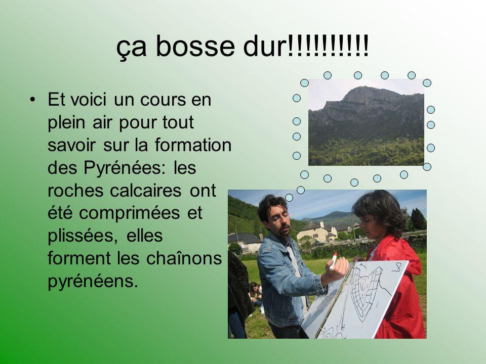 ça bosse dur!!!!!!!!!! Et voici un cours en plein air pour tout savoir sur la formation des Pyrénées: les roches calcaires ont été comprimées et pliss