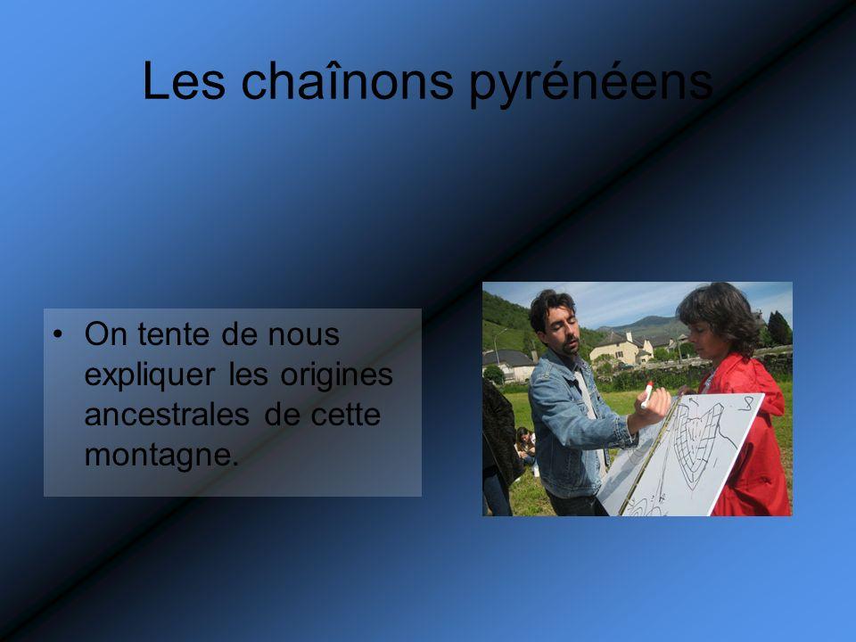 Les chaînons pyrénéens On tente de nous expliquer les origines ancestrales de cette montagne.