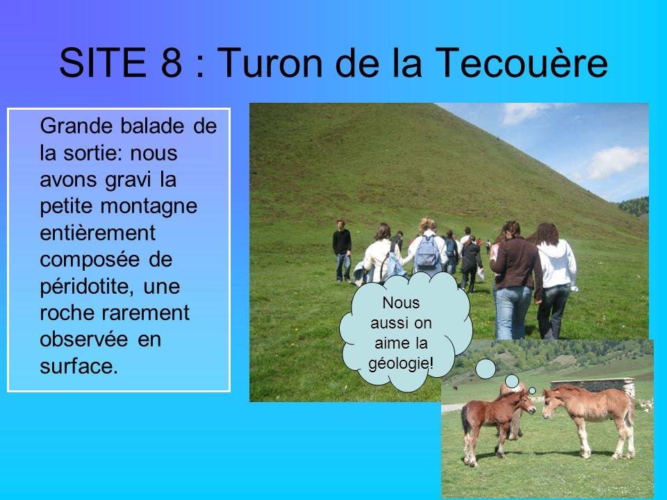 SITE 8 : Turon de la Tecouère Grande balade de la sortie: nous avons gravi la petite montagne entièrement composée de péridotite, une roche rarement o