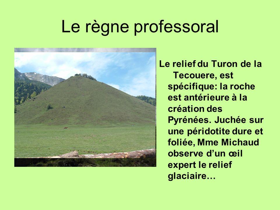Le règne professoral Le relief du Turon de la Tecouere, est spécifique: la roche est antérieure à la création des Pyrénées. Juchée sur une péridotite