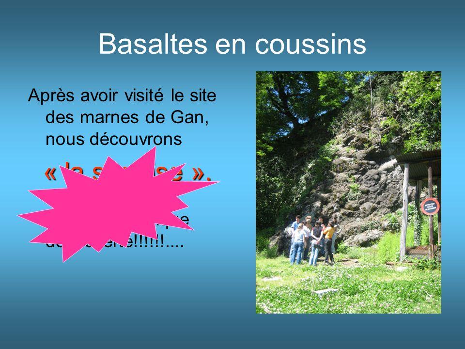 Basaltes en coussins Après avoir visité le site des marnes de Gan, nous découvrons « la surprise », « la surprise », dixit M. Serpeau. Quelle magnifiq