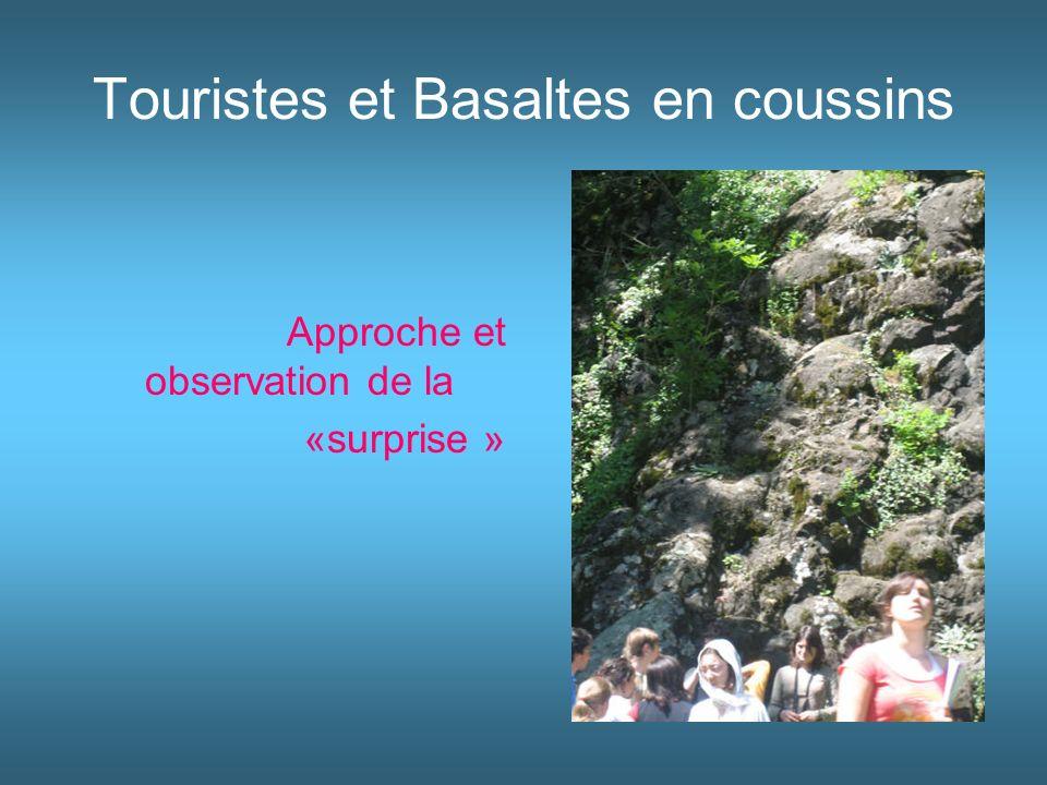 Touristes et Basaltes en coussins Approche et observation de la «surprise »