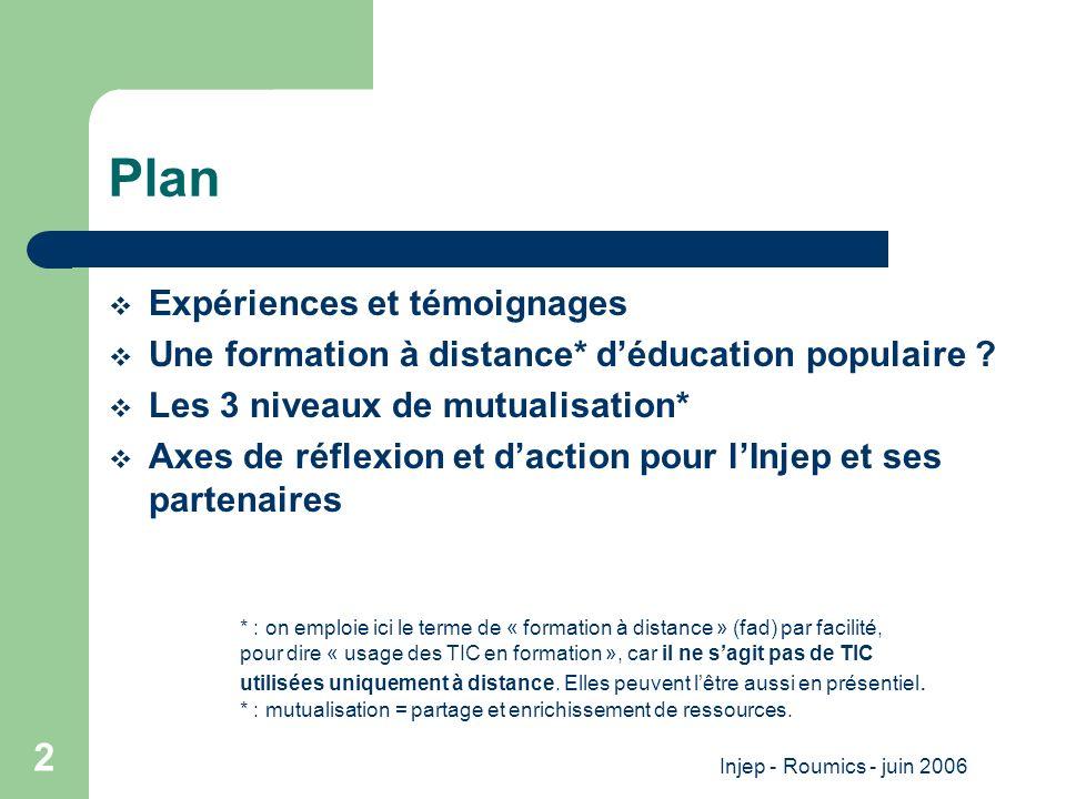 Injep - Roumics - juin 2006 2 Plan Expériences et témoignages Une formation à distance* déducation populaire .