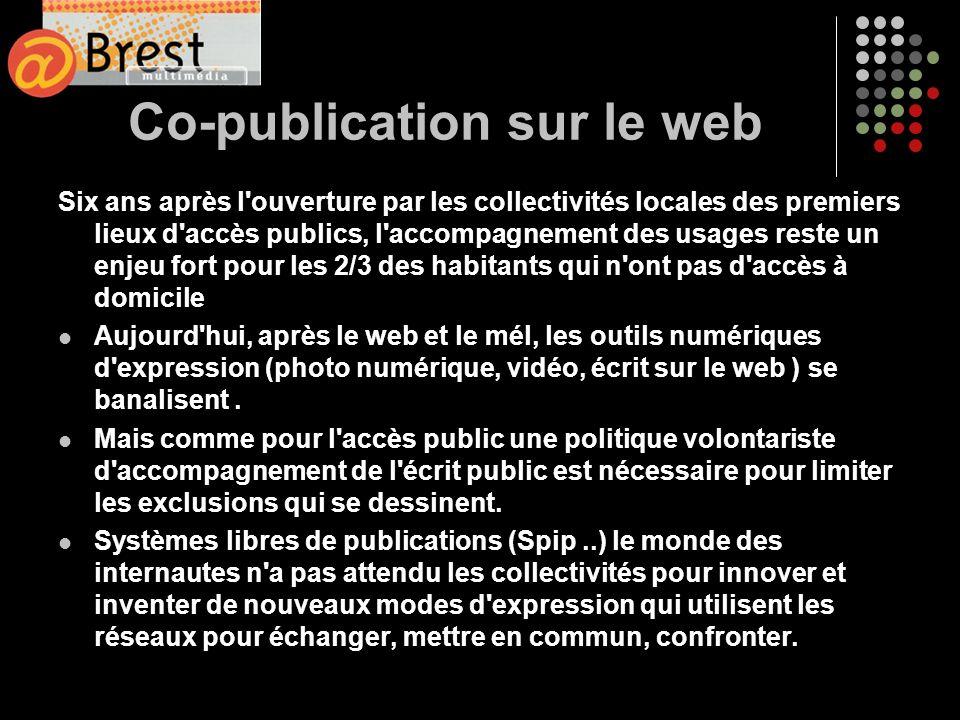 Co-publication sur le web Six ans après l'ouverture par les collectivités locales des premiers lieux d'accès publics, l'accompagnement des usages rest