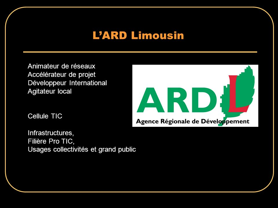 LARD Limousin Animateur de réseaux Accélérateur de projet Développeur International Agitateur local Cellule TIC Infrastructures, Filière Pro TIC, Usages collectivités et grand public
