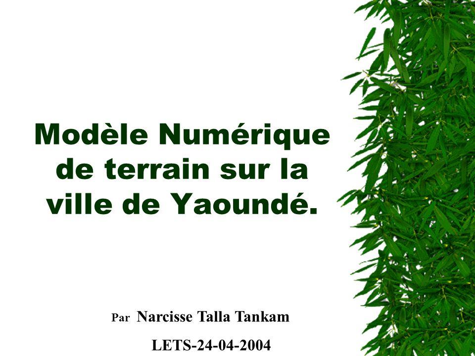 Modèle Numérique de terrain sur la ville de Yaoundé. Par Narcisse Talla Tankam LETS-24-04-2004