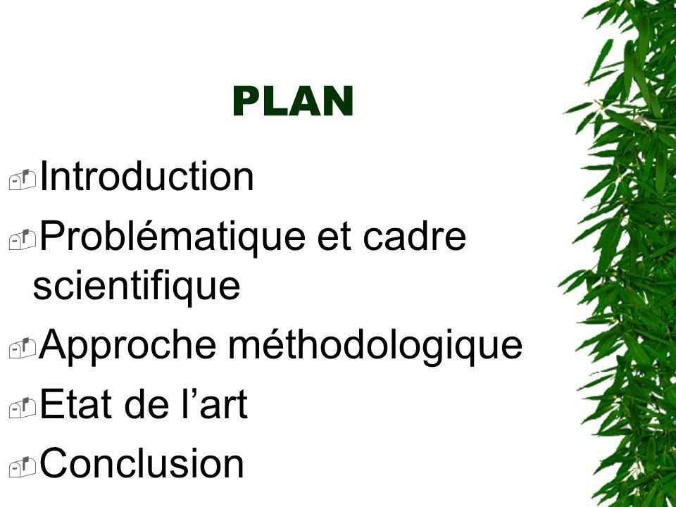 PLAN Introduction Problématique et cadre scientifique Approche méthodologique Etat de lart Conclusion