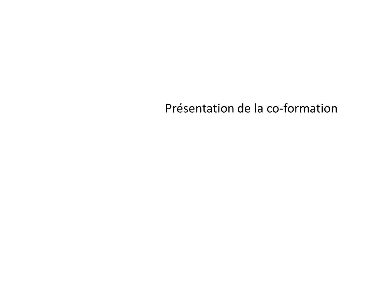 Présentation de la formation La philosophie de la formation : une formation participative qui a produit de la connaissance au delà de léchange dexpérience, une capitalisation (valeur ajoutée)