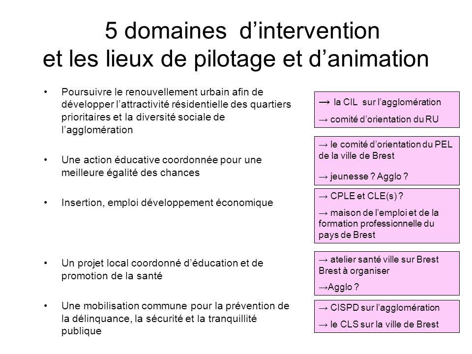 Des moyens pour agir et décider ensemble : les pilotages et animation (propositions) La maîtrise dœuvre : le service DSU