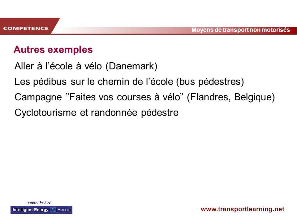 www.transportlearning.net Moyens de transport non motorisés Autres exemples Aller à lécole à vélo (Danemark) Les pédibus sur le chemin de lécole (bus