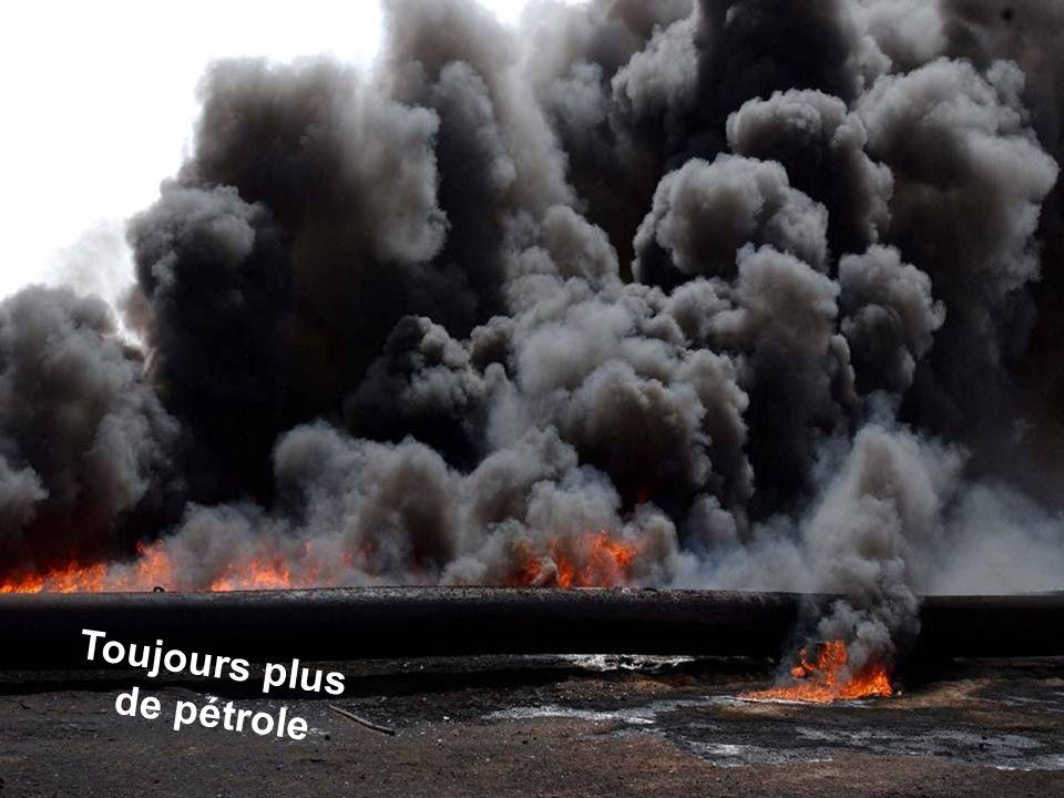 Séance de formation – Participation publique www.transportlearning.net Toujours plus de pétrole