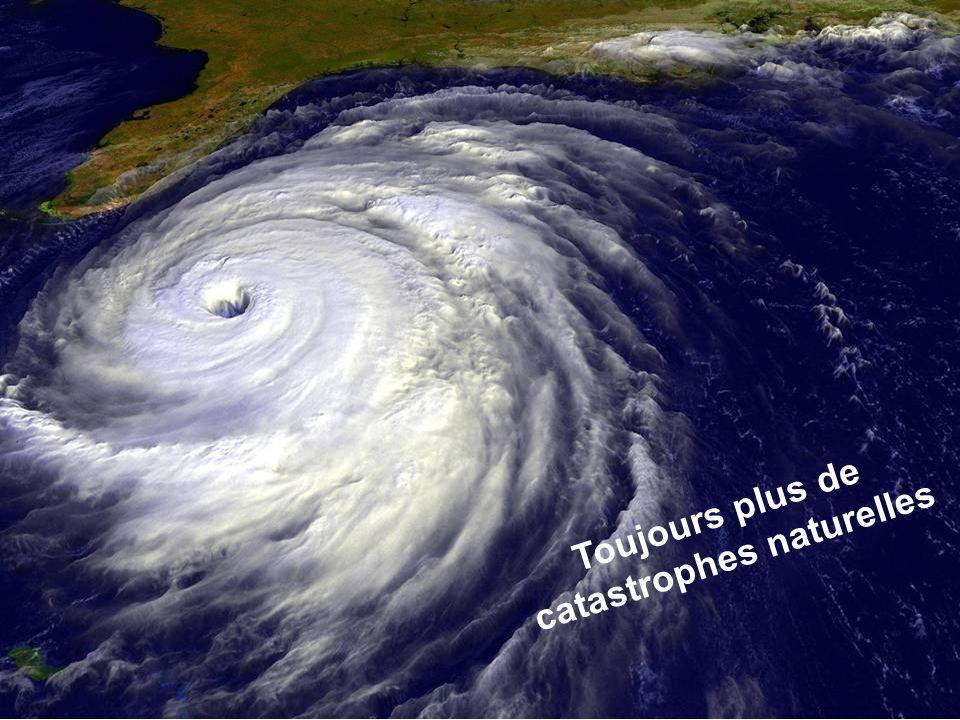 Séance de formation – Participation publique www.transportlearning.net Toujours plus de catastrophes naturelles