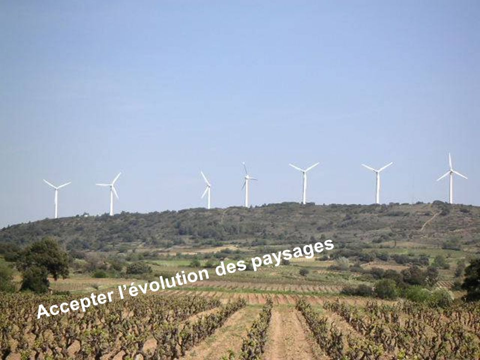 Séance de formation – Participation publique www.transportlearning.net Accepter lévolution des paysages