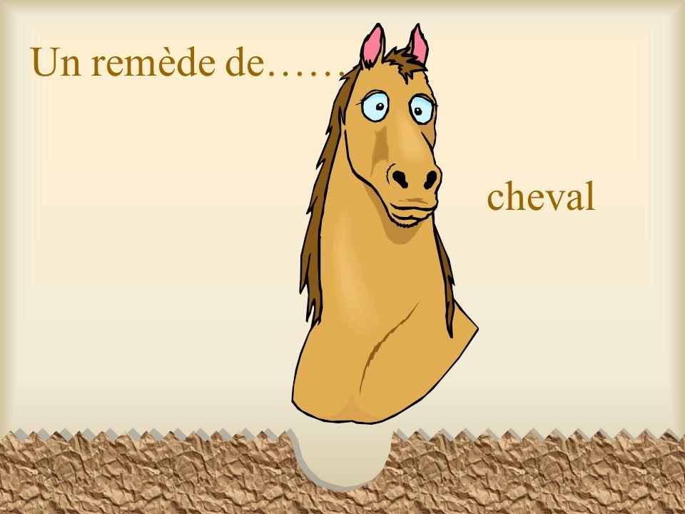 Un remède de…… cheval