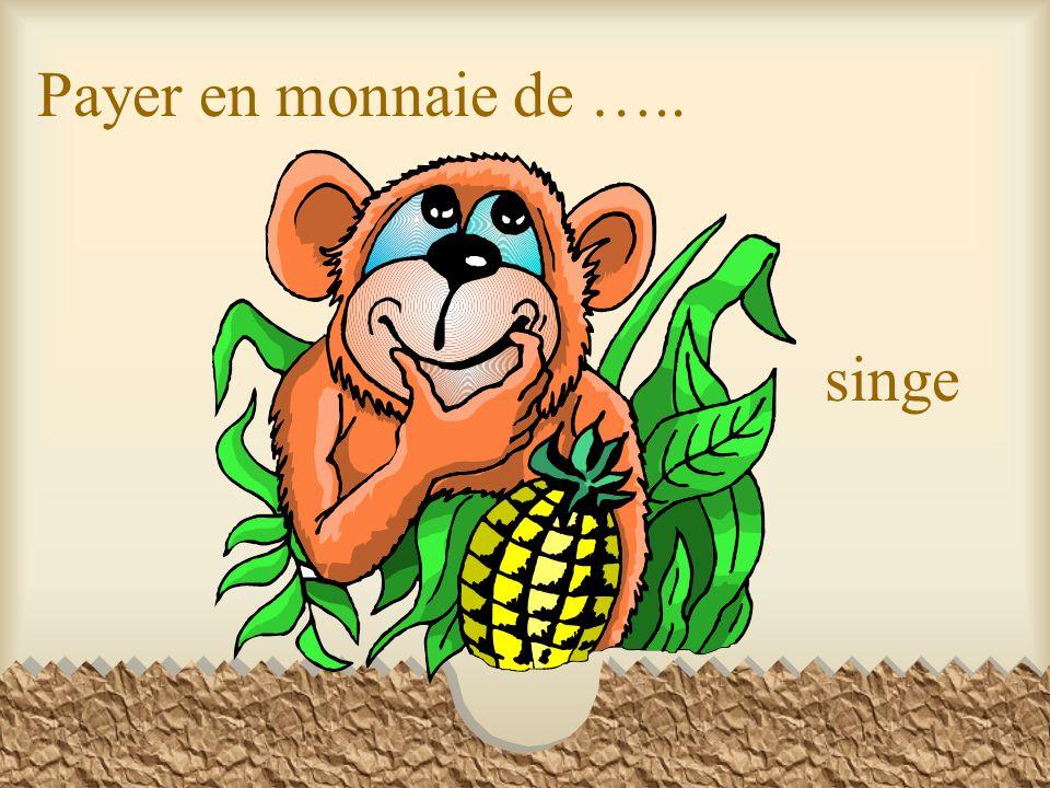 Payer en monnaie de ….. singe