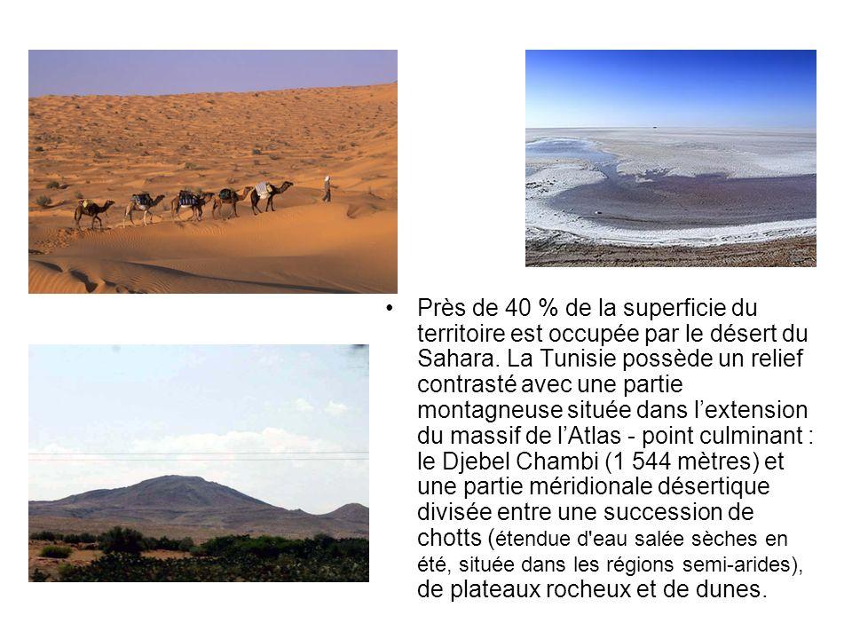 Près de 40 % de la superficie du territoire est occupée par le désert du Sahara. La Tunisie possède un relief contrasté avec une partie montagneuse si