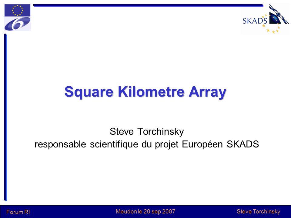 Steve Torchinsky Forum RI Meudon le 20 sep 2007 Projet global Europe projet SKADS: 13 pays, –dont Australie et Afrique du Sud USA Canada Chine Inde Argentine Afrique du Sud Australie