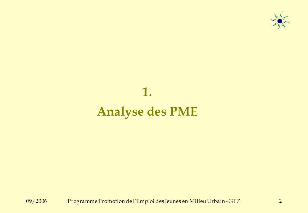 09/2006Programme Promotion de lEmploi des Jeunes en Milieu Urbain - GTZ2 1. Analyse des PME