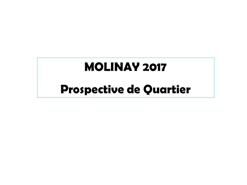 MOLINAY 2017 Prospective de Quartier