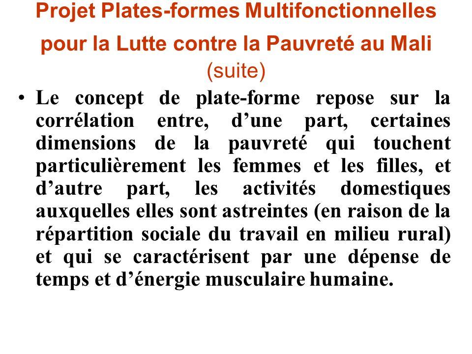 Le concept de plate-forme repose sur la corrélation entre, dune part, certaines dimensions de la pauvreté qui touchent particulièrement les femmes et
