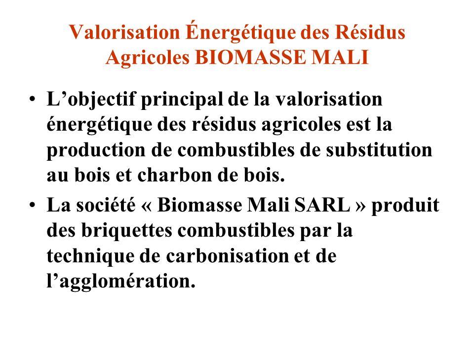 Valorisation Énergétique des Résidus Agricoles BIOMASSE MALI Lobjectif principal de la valorisation énergétique des résidus agricoles est la productio