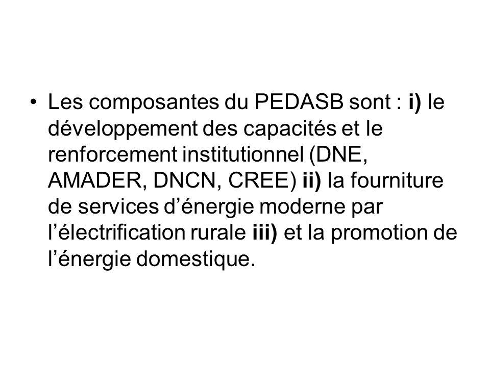 Les composantes du PEDASB sont : i) le développement des capacités et le renforcement institutionnel (DNE, AMADER, DNCN, CREE) ii) la fourniture de se