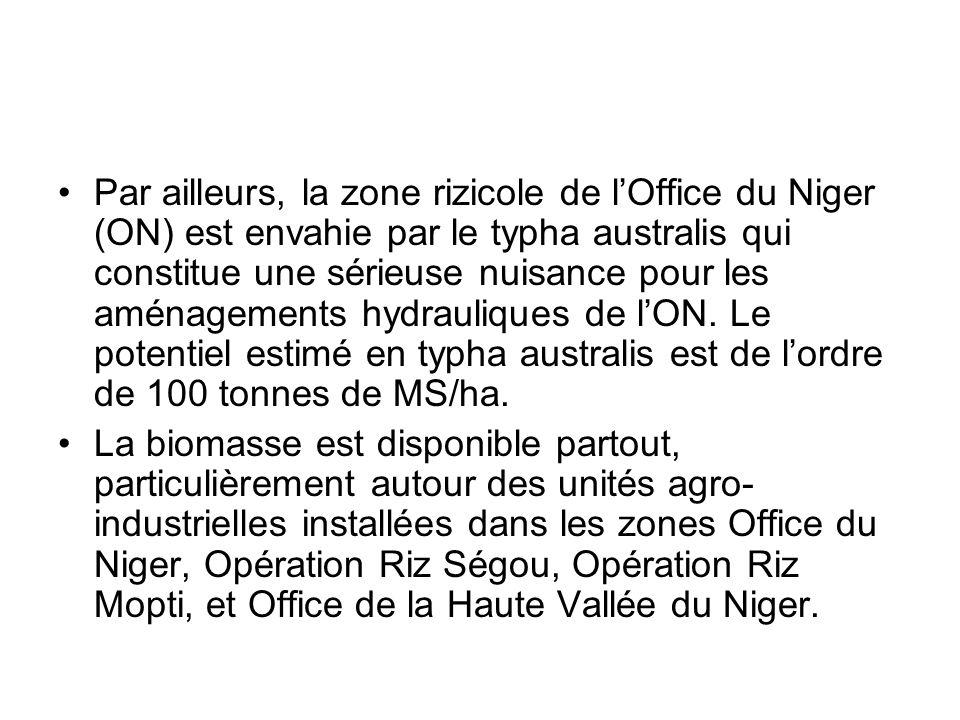 Par ailleurs, la zone rizicole de lOffice du Niger (ON) est envahie par le typha australis qui constitue une sérieuse nuisance pour les aménagements h