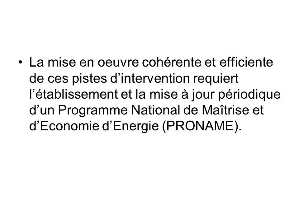 POITIQUE ENERGETIQUE DU MALI PRINCIPES DIRECTEURS Les projets, programmes et actions sinscrivant dans le cadre de la mise en œuvre de la Politique Energétique du Mali doivent prendre en compte les principes suivants i) la Décentralisation ii) la libéralisation iii) lapproche programme iv) lapproche participative v) la compétitivité vi) et la cohérence transversale.