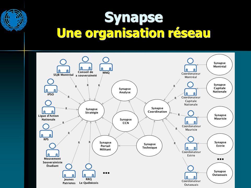 Synapse Une organisation réseau