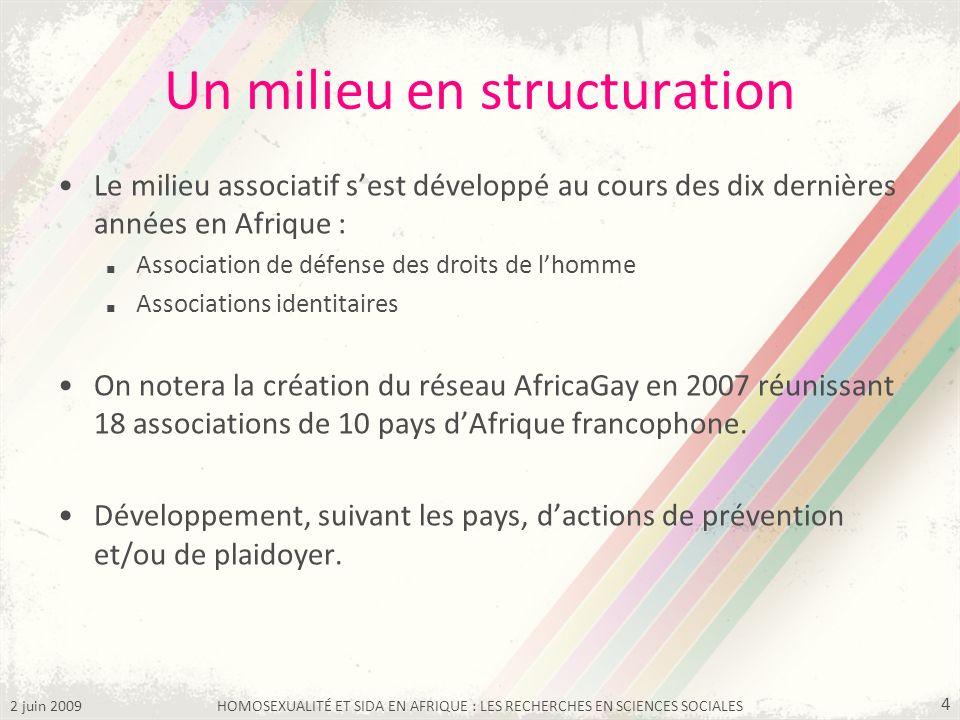 2 juin 2009HOMOSEXUALITÉ ET SIDA EN AFRIQUE : LES RECHERCHES EN SCIENCES SOCIALES 4 Un milieu en structuration Le milieu associatif sest développé au