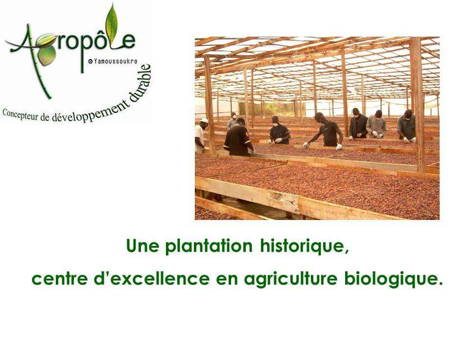 Une plantation historique, centre dexcellence en agriculture biologique.