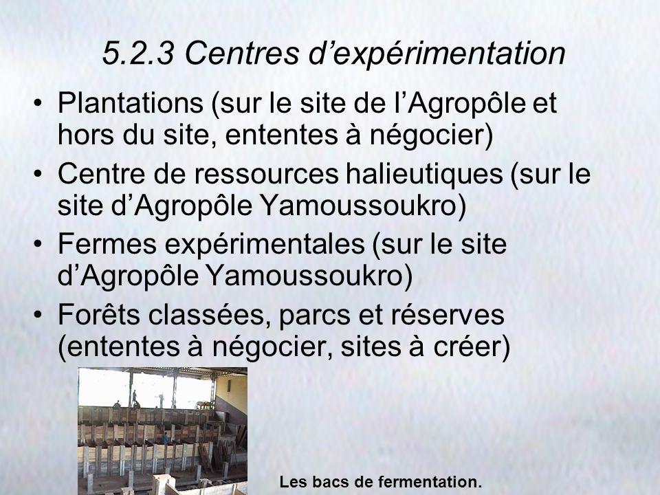 5.2.3 Centres dexpérimentation Plantations (sur le site de lAgropôle et hors du site, ententes à négocier) Centre de ressources halieutiques (sur le s