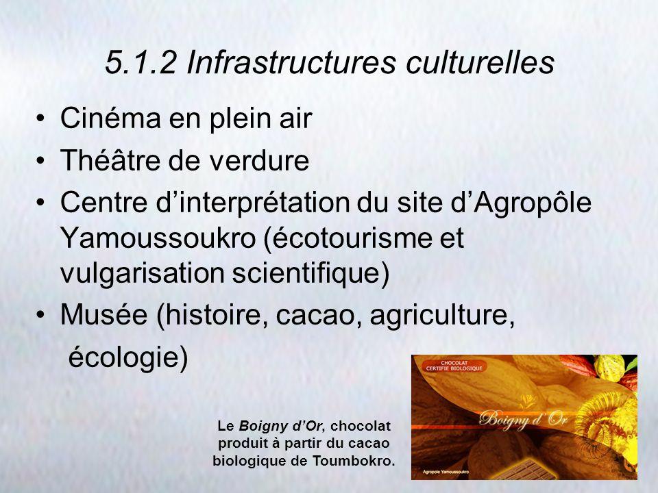 5.1.2 Infrastructures culturelles Cinéma en plein air Théâtre de verdure Centre dinterprétation du site dAgropôle Yamoussoukro (écotourisme et vulgari