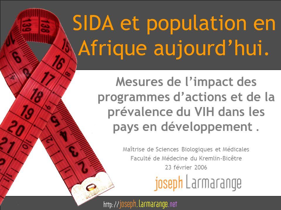 SIDA et population en Afrique aujourdhui. Mesures de limpact des programmes dactions et de la prévalence du VIH dans les pays en développement. Maîtri