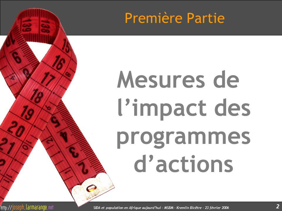 SIDA et population en Afrique aujourdhui - MSBM - Kremlin Bicêtre - 23 février 2006 3 Exercice Pratique Par groupes de 3 ou 4, 10 minutes pour réfléchir à quels indicateurs utiliser pour mesurer limpact de : Un programme national de prise en charge des personnes VIH+ par ARV.