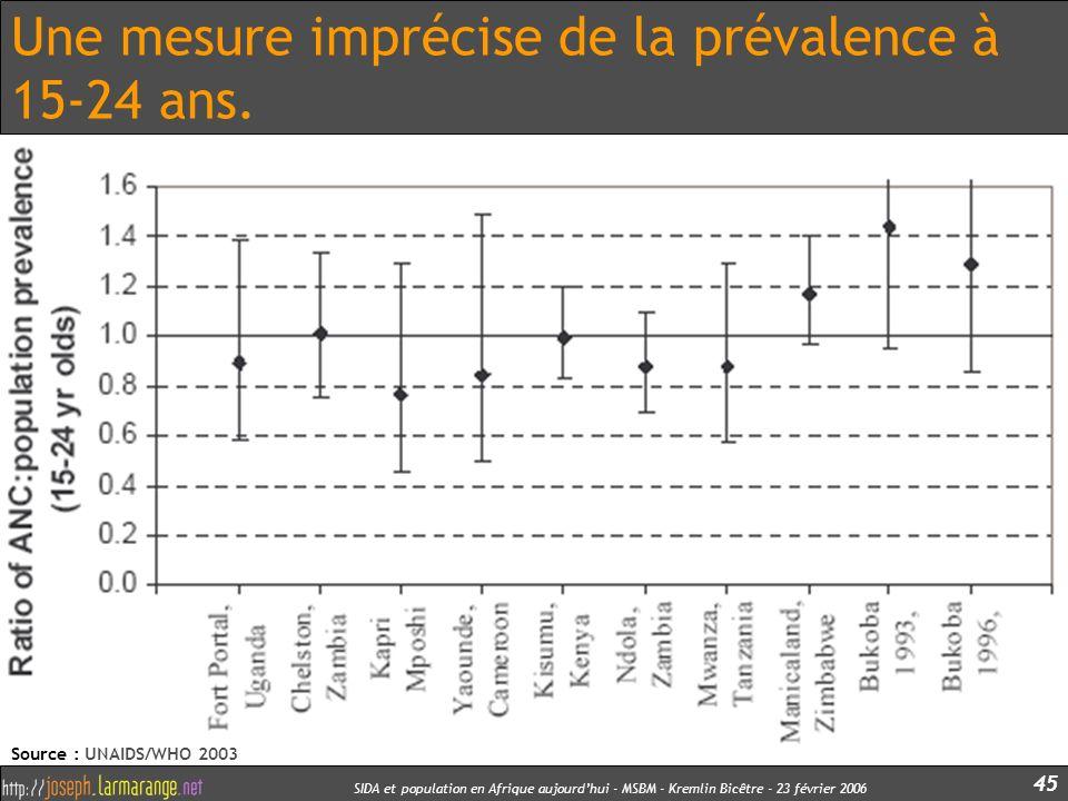 SIDA et population en Afrique aujourdhui - MSBM - Kremlin Bicêtre - 23 février 2006 45 Une mesure imprécise de la prévalence à 15-24 ans. Source : UNA