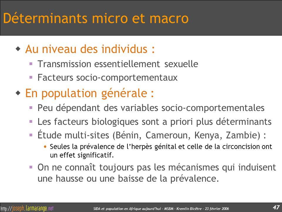 SIDA et population en Afrique aujourdhui - MSBM - Kremlin Bicêtre - 23 février 2006 47 Déterminants micro et macro Au niveau des individus : Transmiss