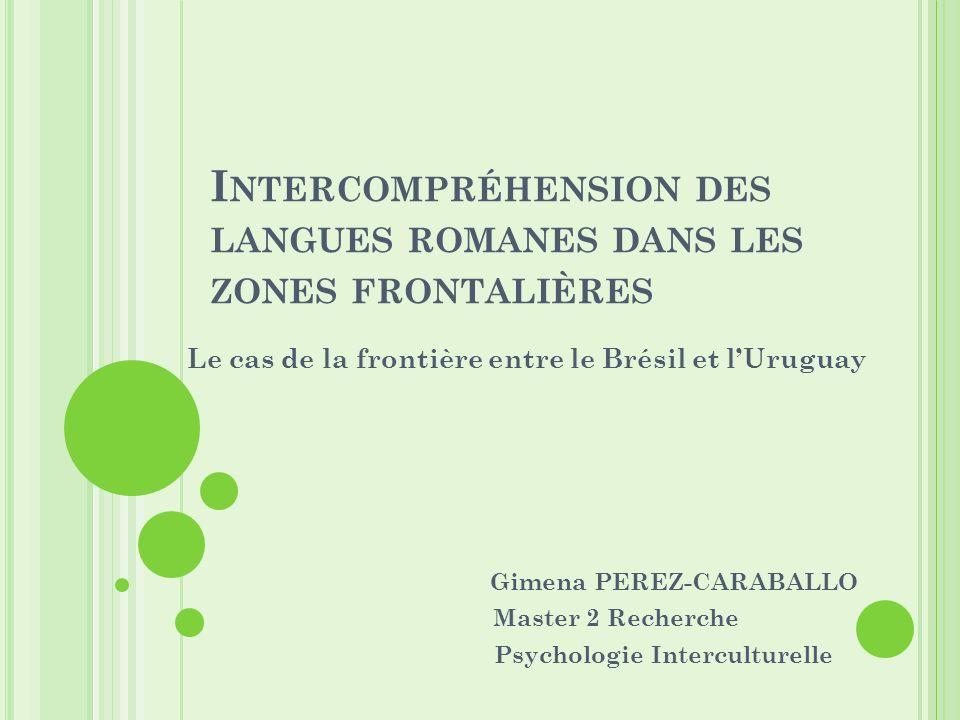 C ONTEXTE Recherches sur lidentité frontalière M1: Identité des frontières: une identité en morceaux.